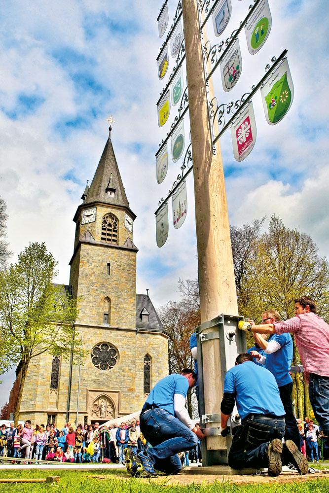 16,62 Meter misst der erste Lipplinger Maibaum.  Foto: DSA/Steg