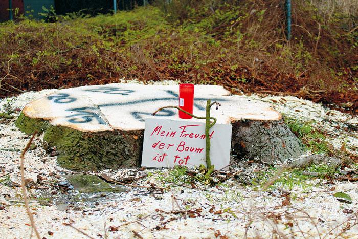 Auf dem Baumstumpf hatte Gerhard Scheer das Todesdatum gesprüht. Daneben stellte ein anderer Umweltschützer ein Schild mit