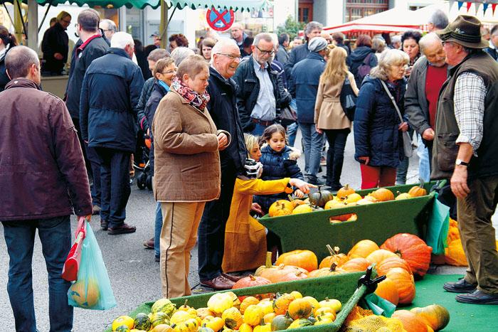 Welcher Kürbis darf es denn sein? Die zahlreichen Besucher des beliebten Marktes hatten angesichts der Vielfalt die Qual der