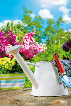 Sei Es Eine Neue Beetbepflanzung Oder Die Terrasse, Die Ausgebessert Werden  Muss U2013 Jetzt Ist Die Zeit, Die Eigenen Gartenprojekte ...