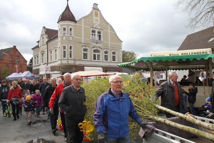 Rund 200 Gäste begleiteten die geschmückten Maibäume zu ihrem neuen Bestimmungsort. Die Schüffeltruppe buddelte die Pflan
