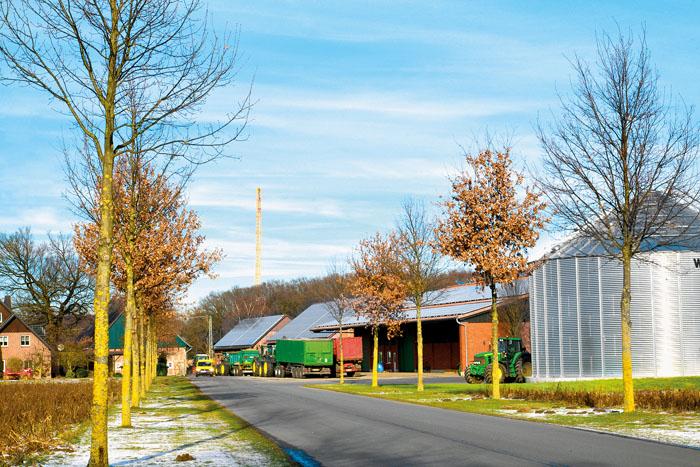 Hoch hinauf in den Himmel ragt hinter dem Bokeler Biogas-Hof Hansmeier ein riesiger Kran. Doch steht der nicht im Stadtgebiet