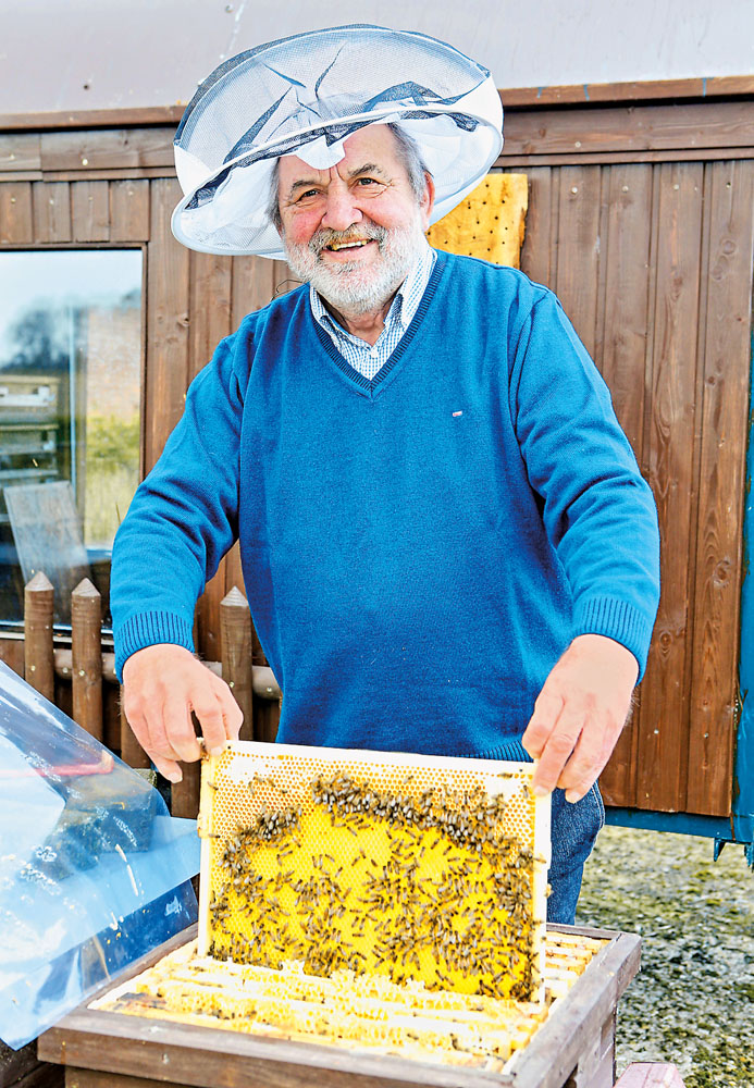 Die Schutzkleidung braucht der Experte nur selten, er weiß in Sachen Honigernte mit den Tierchen umzugehen.  Fotos: DSA/Steg