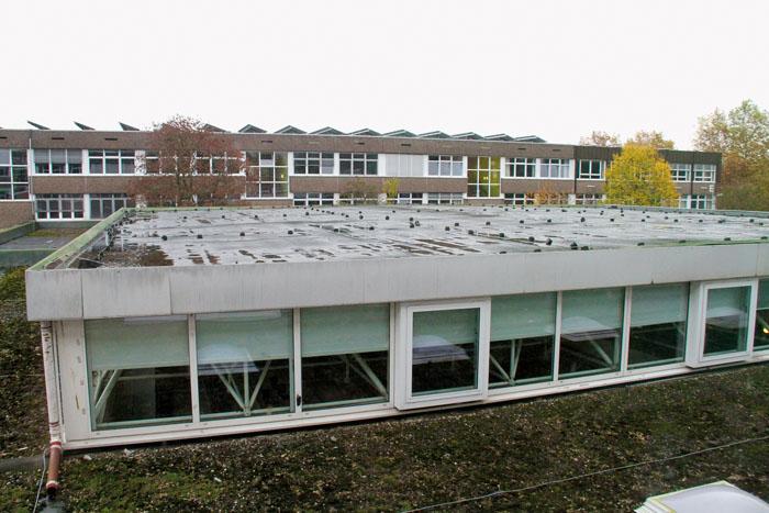 Der Sanierungsbedarf des Schulzentrums ist unumstritten, rund 50 Millionen Euro könnte es die Steuerzahler kosten, bis eines