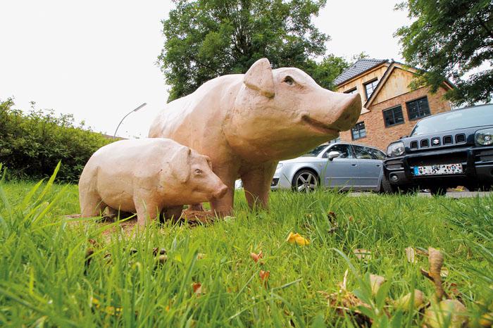 Sie sollen auf die Geschichte des Stadtteiles aufmerksam machen, die beiden Schweineskulpturen am Fachwerkensemble mittem im