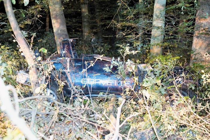 Eingekeilt zwischen den Bäumen: Der Fahrer der Corvette hatte keine Chance, den Unfall zu überleben. Foto: Eickhoff